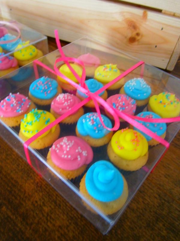 mini cupcakes – mini pops